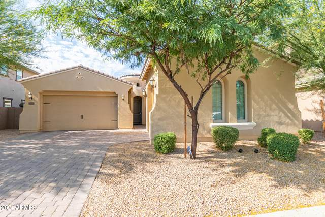 14661 W Pasadena Avenue, Litchfield Park, AZ 85340 (MLS #6255495) :: Long Realty West Valley