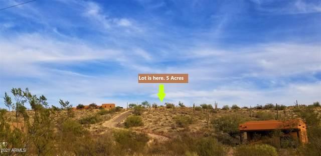 140X1 N Vista Del Oro Drive, Fort McDowell, AZ 85264 (MLS #6255505) :: Executive Realty Advisors