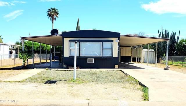 865 S Evangeline Avenue, Mesa, AZ 85208 (MLS #6255507) :: Elite Home Advisors