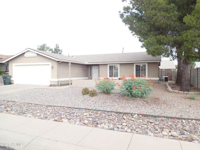 2893 Raven Drive, Sierra Vista, AZ 85650 (MLS #6255509) :: Dijkstra & Co.