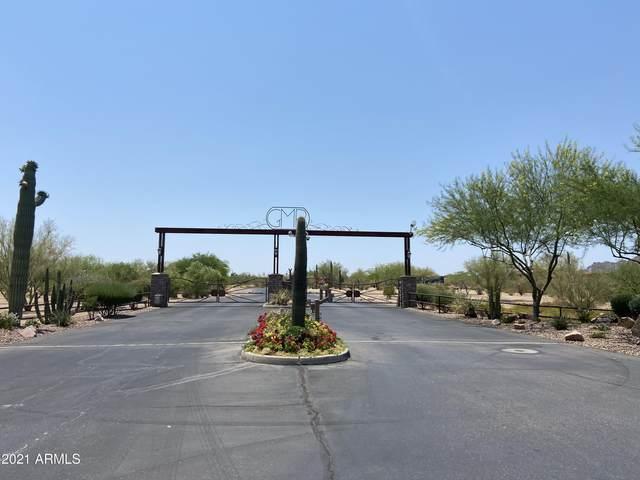 29900 N Baker Court, Scottsdale, AZ 85252 (MLS #6255512) :: Lucido Agency