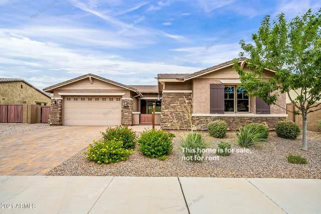 22100 E Maya Road, Queen Creek, AZ 85142 (MLS #6255584) :: Dijkstra & Co.