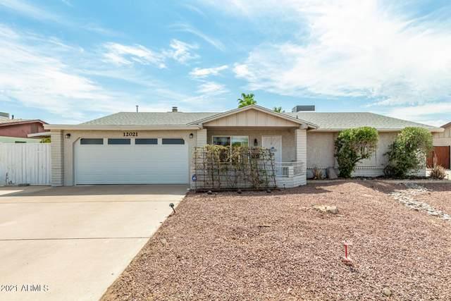 12021 N 35TH Street, Phoenix, AZ 85028 (MLS #6255602) :: Yost Realty Group at RE/MAX Casa Grande