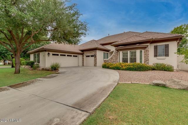 3028 E Comstock Drive, Gilbert, AZ 85296 (MLS #6255669) :: The Everest Team at eXp Realty