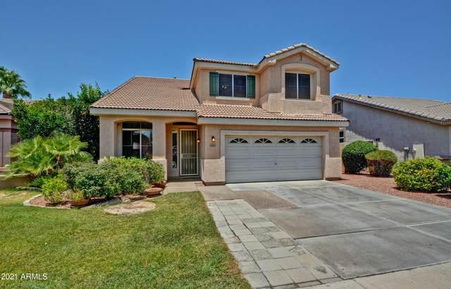 6866 W Potter Drive, Glendale, AZ 85308 (MLS #6255690) :: Yost Realty Group at RE/MAX Casa Grande