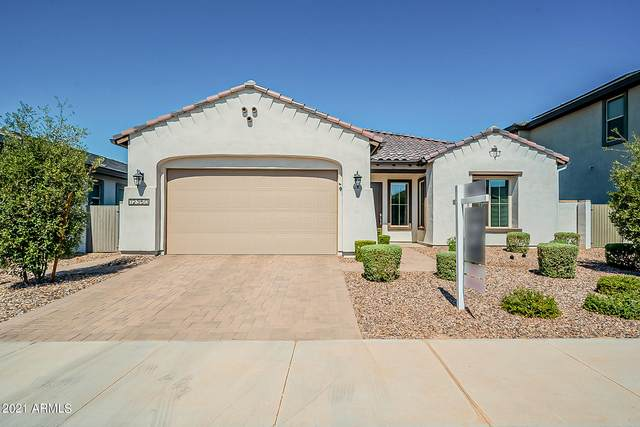 12350 N 145TH Avenue, Surprise, AZ 85379 (MLS #6255694) :: The Everest Team at eXp Realty