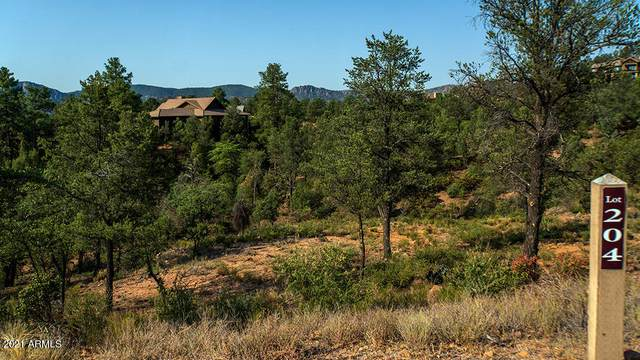 3003 E Hanging Rock, Payson, AZ 85541 (MLS #6255710) :: Service First Realty