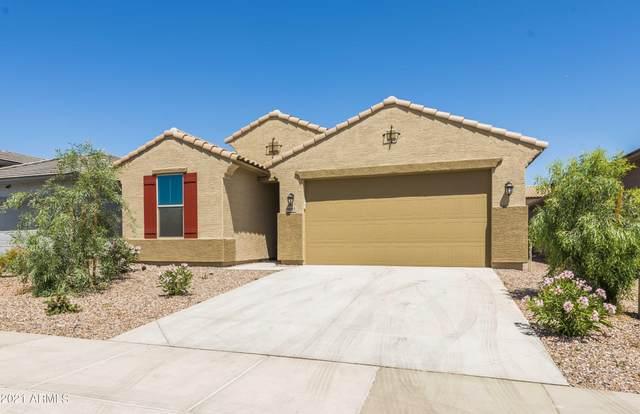 9093 N 98TH Avenue, Peoria, AZ 85345 (MLS #6255781) :: Lucido Agency