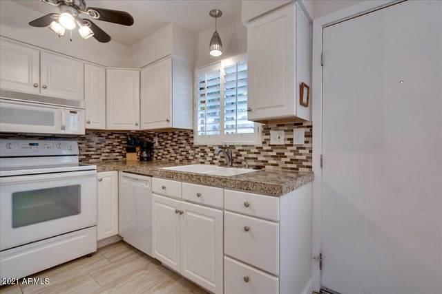 4600 N 68TH Street #343, Scottsdale, AZ 85251 (MLS #6255782) :: Dave Fernandez Team | HomeSmart