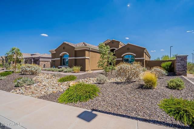 10007 E Grandview Street, Mesa, AZ 85207 (MLS #6255911) :: Yost Realty Group at RE/MAX Casa Grande