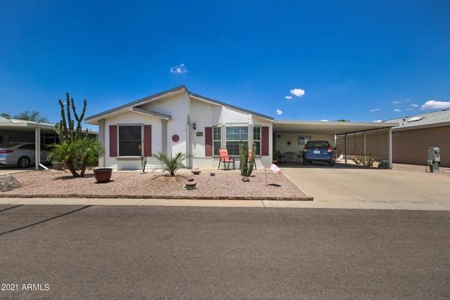 8500 E Southern Avenue #586, Mesa, AZ 85209 (MLS #6256032) :: Jonny West Real Estate