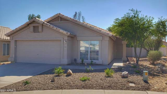 16632 N 35TH Place, Phoenix, AZ 85032 (MLS #6256144) :: Yost Realty Group at RE/MAX Casa Grande