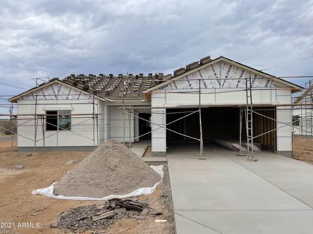 35024 N Palm Drive, San Tan Valley, AZ 85140 (MLS #6256257) :: Arizona Home Group