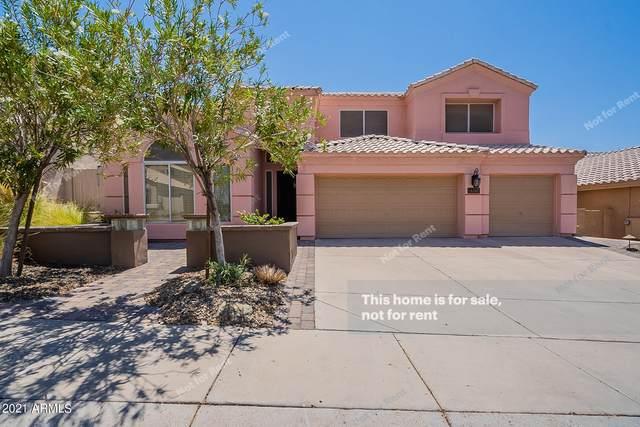 14245 S 8TH Street, Phoenix, AZ 85048 (MLS #6256339) :: Yost Realty Group at RE/MAX Casa Grande