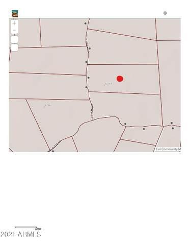 2589 N Lipan Road, Williams, AZ 86046 (MLS #6256363) :: Yost Realty Group at RE/MAX Casa Grande