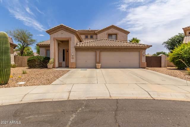 341 N Laura Drive, Chandler, AZ 85225 (MLS #6256409) :: Yost Realty Group at RE/MAX Casa Grande