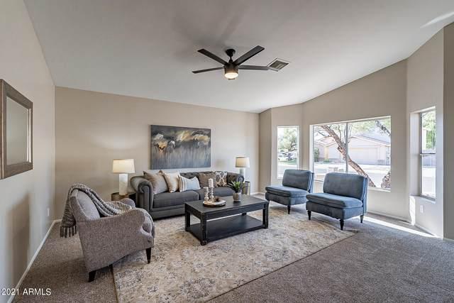 4049 W Questa Drive, Glendale, AZ 85310 (MLS #6256601) :: Yost Realty Group at RE/MAX Casa Grande