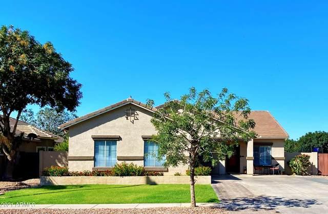 4085 E Claxton Avenue, Gilbert, AZ 85297 (MLS #6256694) :: Yost Realty Group at RE/MAX Casa Grande