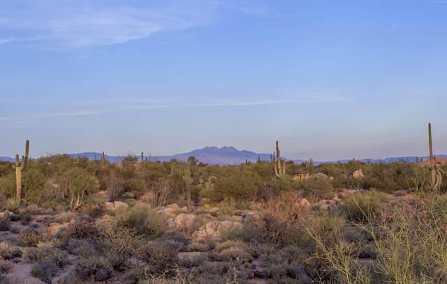 28787 N 114TH Street, Scottsdale, AZ 85262 (MLS #6256739) :: ASAP Realty