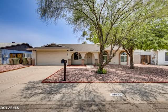 18013 N 57TH Avenue, Glendale, AZ 85308 (MLS #6257025) :: Yost Realty Group at RE/MAX Casa Grande