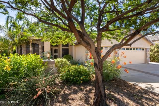 6255 S Opal Drive, Chandler, AZ 85249 (MLS #6257044) :: Yost Realty Group at RE/MAX Casa Grande