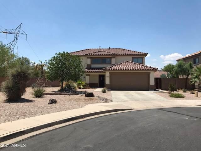 11237 E Ramblewood Circle, Mesa, AZ 85212 (MLS #6257089) :: Yost Realty Group at RE/MAX Casa Grande