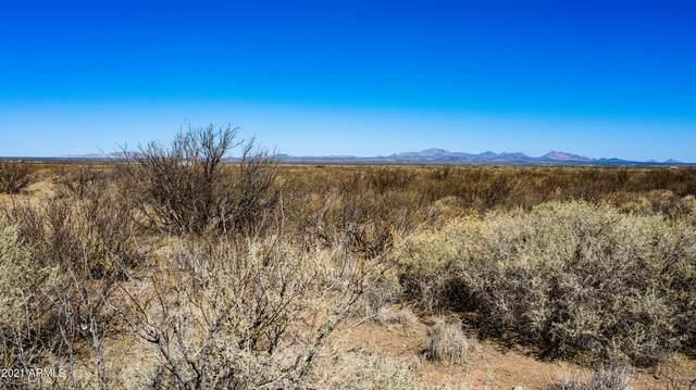 TBD S Trails End Road, Pearce, AZ 85625 (MLS #6257104) :: The Laughton Team