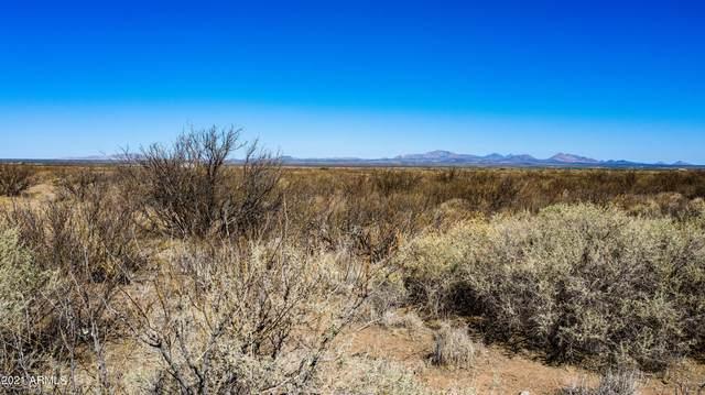 TBD S Cottonwood Road, Pearce, AZ 85625 (MLS #6257107) :: Yost Realty Group at RE/MAX Casa Grande