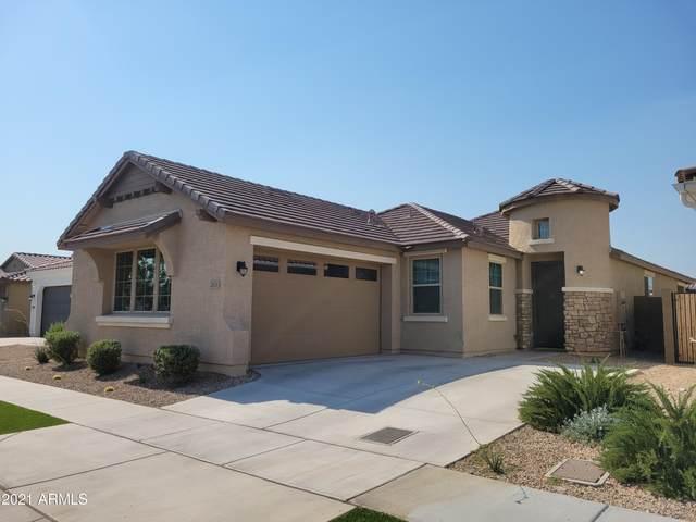 2834 E Fraktur Road, Phoenix, AZ 85040 (MLS #6257156) :: The Carin Nguyen Team