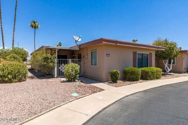 13232 N 98TH Avenue T, Sun City, AZ 85351 (MLS #6257363) :: The Laughton Team