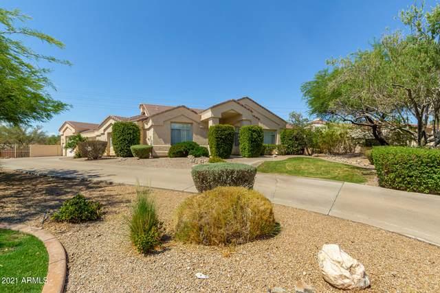 11820 E Cannon Drive, Scottsdale, AZ 85259 (MLS #6257410) :: Yost Realty Group at RE/MAX Casa Grande