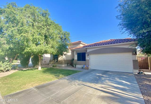 855 W Heather Avenue, Gilbert, AZ 85233 (MLS #6257426) :: Openshaw Real Estate Group in partnership with The Jesse Herfel Real Estate Group