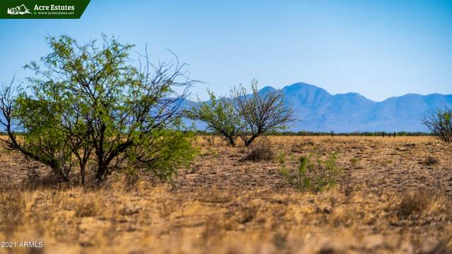 tbd E Kimzey Road, Willcox, AZ 85643 (MLS #6257476) :: Executive Realty Advisors