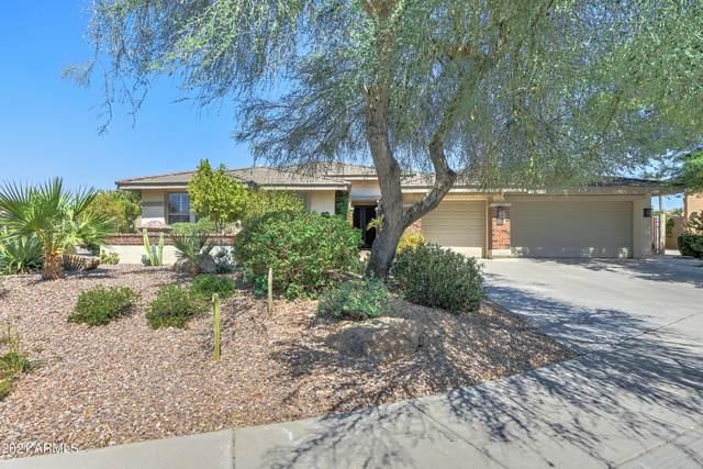 142 E Louis Way, Tempe, AZ 85284 (MLS #6257479) :: Yost Realty Group at RE/MAX Casa Grande