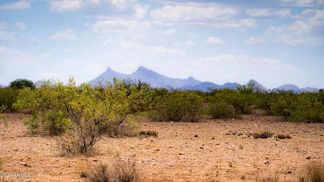 tbd Navajo Avenue, McNeal, AZ 85617 (MLS #6257496) :: Yost Realty Group at RE/MAX Casa Grande