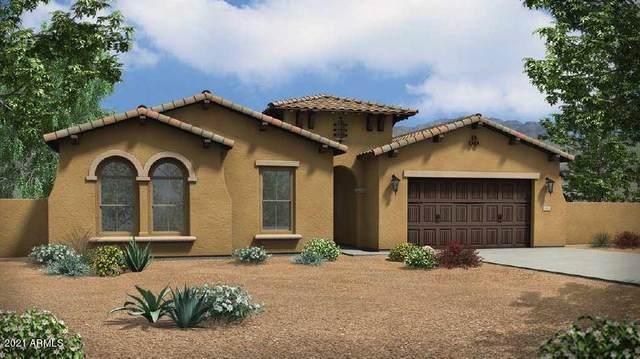 9288 W Louise Drive, Peoria, AZ 85383 (MLS #6257522) :: Yost Realty Group at RE/MAX Casa Grande