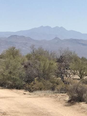 154 E Wildcat Drive, Scottsdale, AZ 85262 (MLS #6257637) :: Fred Delgado Real Estate Group