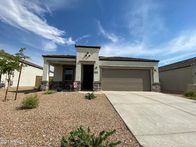 30949 W Mulberry Drive, Buckeye, AZ 85396 (MLS #6257742) :: Klaus Team Real Estate Solutions