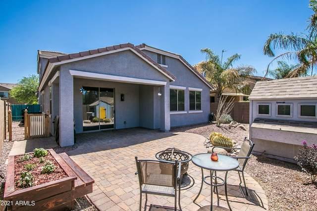 3812 S Vineyard Avenue, Gilbert, AZ 85297 (MLS #6257747) :: Yost Realty Group at RE/MAX Casa Grande