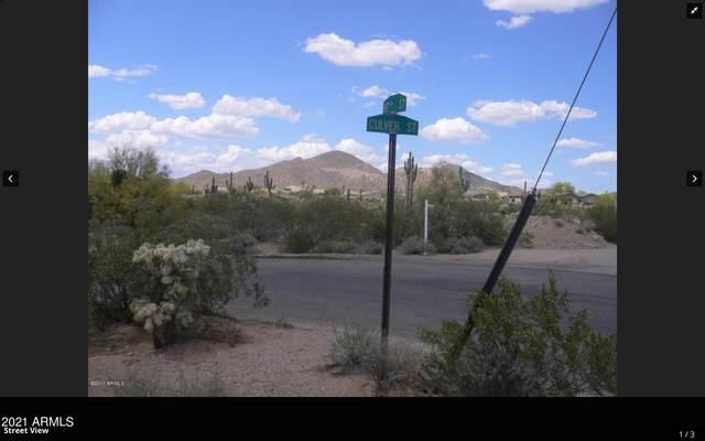 8700 E Culver Street, Mesa, AZ 85207 (MLS #6257858) :: CANAM Realty Group