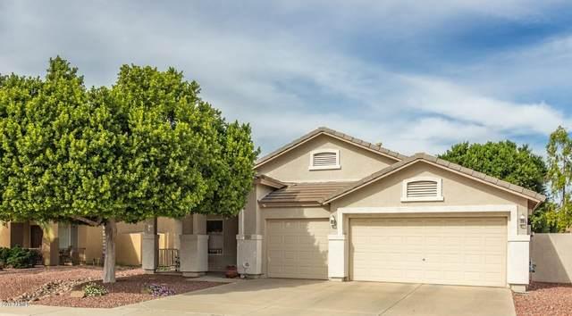 7834 W Robin Lane, Peoria, AZ 85383 (MLS #6257888) :: Executive Realty Advisors