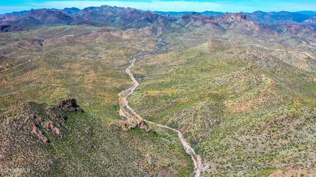 4000 E Castle Hot Springs Road, Morristown, AZ 85342 (MLS #6258035) :: Howe Realty