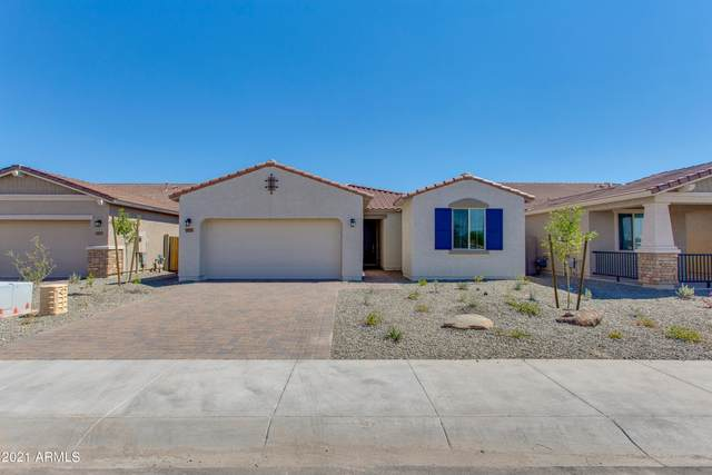 11657 W Levi Drive, Avondale, AZ 85323 (MLS #6258149) :: Yost Realty Group at RE/MAX Casa Grande