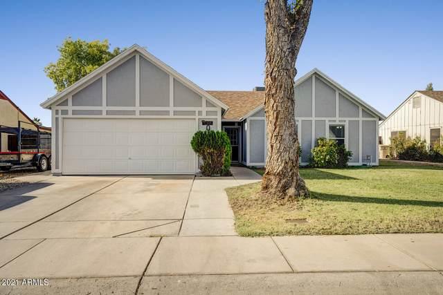 6340 W Grandview Road, Glendale, AZ 85306 (MLS #6258294) :: Yost Realty Group at RE/MAX Casa Grande