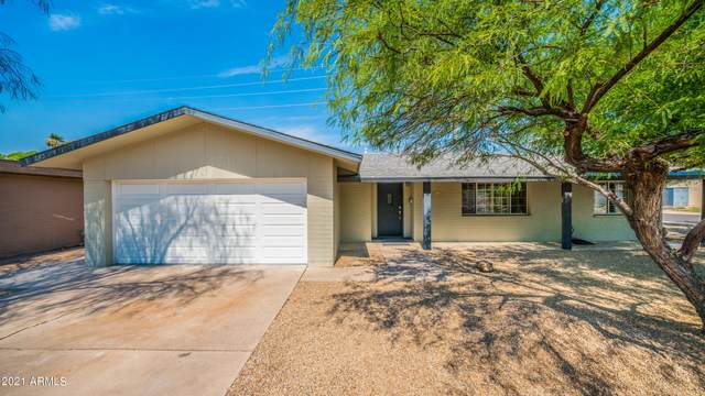 5438 N 81ST Place, Scottsdale, AZ 85250 (MLS #6258336) :: The Carin Nguyen Team