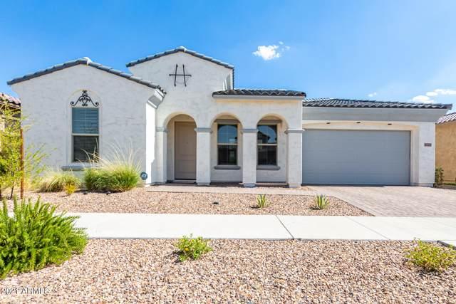 10225 E Thatcher Avenue, Mesa, AZ 85212 (MLS #6258502) :: Yost Realty Group at RE/MAX Casa Grande