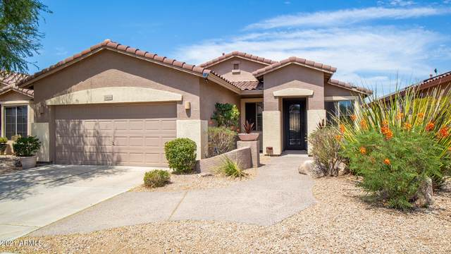 24624 N 72ND Place, Scottsdale, AZ 85255 (MLS #6258576) :: Yost Realty Group at RE/MAX Casa Grande