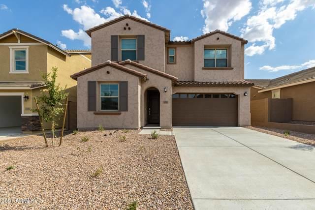 12503 W Forest Pleasant Place, Peoria, AZ 85383 (MLS #6258657) :: Elite Home Advisors