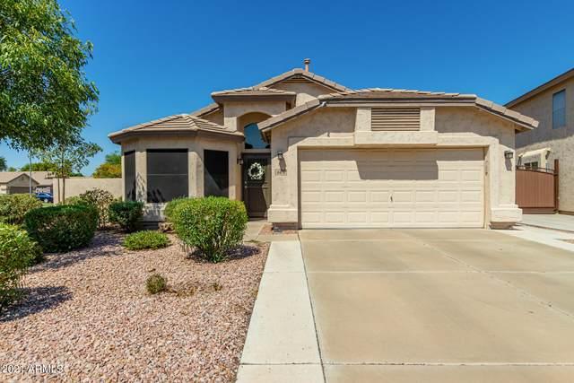 6474 W Escuda Road, Glendale, AZ 85308 (MLS #6258807) :: Yost Realty Group at RE/MAX Casa Grande