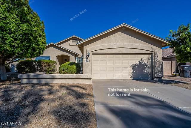 1900 N Comanche Drive, Chandler, AZ 85224 (MLS #6258843) :: Yost Realty Group at RE/MAX Casa Grande